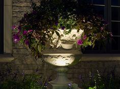 Shop VOLT's spotlights to illuminate your pots & plants Patio Lighting, Landscape Lighting, Window Furniture, Shop Interior Design, Potted Plants, Fountain, Bulb, Spotlights