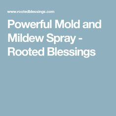 Powerful Mold and Mildew Spray - Rooted Blessings