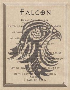 Falcon Prayer Poster Animal Spirit 8 1 2 x 11 Art Page Wicca Native American Animal Spirit Guides, Animal Medicine, Power Animal, Animal Magic, Book Of Shadows, Art Pages, Magick, Pagan Witchcraft, Dragons