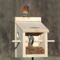 "patio de papas ""Stake and place"" feeder = enjoy your bluebirds anywhere! Feed your nesting bluebirds with our new and improved Bluebird Post Feeder! The built-in perch provides easy entr Bird House Feeder, Diy Bird Feeder, Bird House Plans, Bird House Kits, Garden Projects, Wood Projects, Carpenter Bee Trap, Bee Traps, Bluebird House"