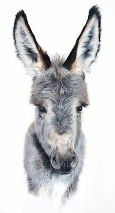 Rachael wild artist mini donkey, a donkey, cute creatures, beautiful creatures, animals Farm Animals, Animals And Pets, Funny Animals, Cute Animals, Cute Donkey, Mini Donkey, Donkey Donkey, Baby Donkey, Animal Paintings