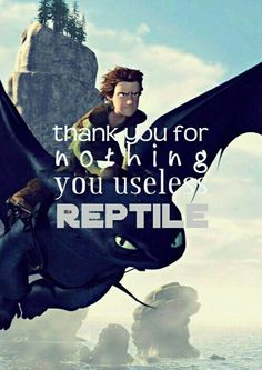 "This is my favorite quote from the movie! Also ""Stop it Toothless! We need her to like us!"" and ""Amd now the spinning."""