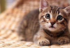 That face! :D