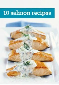 10 Salmon Recipes -- Be a seafood gourmet with our top-rated salmon recipes. Our tasty salmon recipes are quick and easy. Featuring a variety of baked, boiled and grilled salmon, there's something delicious for everyone.