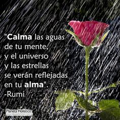 Happy Words, Love Words, Life Thoughts, Positive Thoughts, Rumi Quotes, Life Quotes, Quotes En Espanol, Yoga Mantras, Spiritual Words