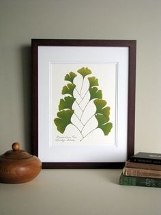 Pressed leaves print, 11x14 double matted, Ginkgo leaves, bright green leaf, wall decor no. 0071