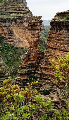 Shiraz Canyon, Kouhdasht, Lorestan province, Iran (Persian: تنگ شیرز،کوهدشت، استان لرستان) Credit: Ali Hossein Pour, Bahman Ebrahimi and IranDeserts.com/