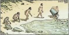 Evolution In A Nutshell by Dan Piraro, 2007