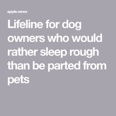 Lifeline for dog owners who would rather sleep rough than be parted from pets Homeless People, Dog Owners, Manchester, Sleep, Cases, News