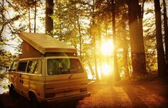 Morning campers. Hope the sun is shining for you all today. #Repost @buttercupandfriends #westy #Westfalia #forest #aircooledvw  #vanlife #dreamlife #campervanlife #camperbus #campervan #camper #vw #vdub #vwbus #vwcamper #vwcampervan #wanderlust #kombi #wildernessculture #vanlife #transporter #T25 by rate_my_camper