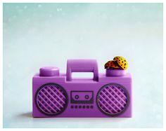 Fine art photography Ladybugs Funny wall art decor by AylilAntoniu