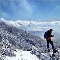 Beautiful Halla Mountain in Jeju Island in Korea. It was last Feburary.