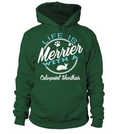 # Life-is-merrier-with-a-Colorpoint-Shorthair .  Life is merrier with a Colorpoint Shorthair, Cat lover