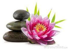 Resultado de imagem para lotus flowers