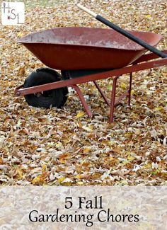 Make the most of next year's garden by doing these 5 fall gardening chores.: