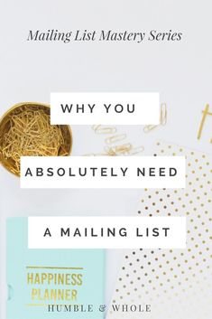 Are you a new blogger or online business owner who is confused about mailing lists?  What's the purpose of a mailing list?  And what's the point of email marketing?  Check out this post to learn why you must have a mailing list for your brand!