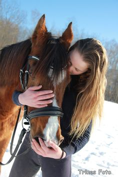 My Photos, Horses, Animals, Animales, Animaux, Animal, Animais, Horse