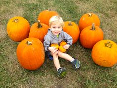 Looking for pumpkin patches and hayrides?