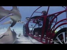 Who wants to go for a ride with sharks? totaly jawsome! VOLKSWAGEN SPONSORS SHARK WEEK ON THE DISCOVERY CHANNEL