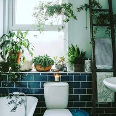 I D E A S Bathroom Plants If you don't have the patience to look after indoor plants now during the summeranother great place for plants is your bathroom.The moisture after a shower is perfect for Bathroom Inspiration, Interior Inspiration, Garden Inspiration, Interior Ideas, Interior Plants, Creative Inspiration, Garden Ideas, Design Inspiration, Sweet Home