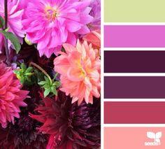 Flora palet