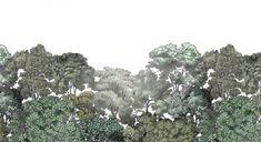 Bellewood.jpg (1024×558)