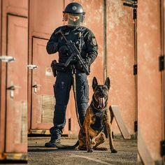 Breed ➡️K9  ➡️ DUTCH SHEPHERD DOG  From @adventure_K9 #Germany   📸: @chris__baumgart Dutch Shepherd Dog, Germany, Batman, Adventure, Superhero, Dogs, Fictional Characters, Doggies, Deutsch