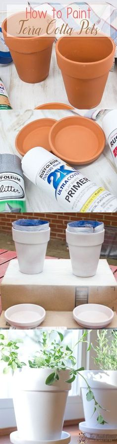 Learn how to paint terra cotta pots in this DIY tutorial. A great idea to turn ordinary clay pots into shabby classy pots!