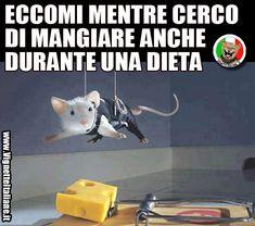 La dieta impossibile (www.VignetteItaliane.it)
