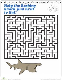 Shark Week Worksheets: Shark Maze.  I'm literally gonna print out 30 of these and send them to my zoo camp staff