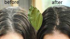Organic Hair Dye, Beauty Secrets, Beauty Hacks, Cabello Hair, Hair Knot, Tips Belleza, Diy Hairstyles, Dark Hair, Hair Hacks