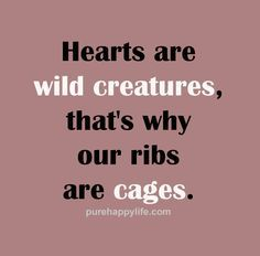 #quotes - hearts are      #quotes  - hearts are wild creatures...more on  purehappylife.com   https://www.pinterest.com/pin/445082375652584164/   Also check out: http://kombuchaguru.com