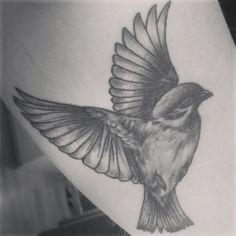 Tattoo Vogel  Meise