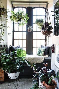 west elm - A Balitmore Home Filled Floor To Ceiling With Plants