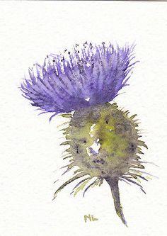 35 ideas tattoo flower acuarela watercolour paintings for 2019 Watercolor Flowers, Watercolor Art, Watercolour Paintings, Paint Flowers, Watercolours, Scottish Symbols, Thistle Tattoo, Thistle Wedding, Thistle Flower