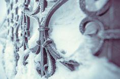 Check out Fence by Lagunova_Maya on Creative Market