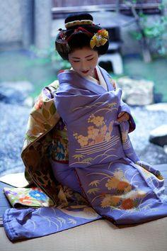 慶祝新春 : Now and Here. Satsuki-san as a maiko. This kimono is just WOW!