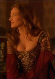 "Burgundy Italian Renaissance - From ""Dangerous Beauty"", recycled for The Tudors."