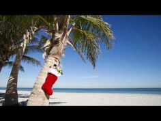 Christmas In Key Largo Ace Suggs - YouTube