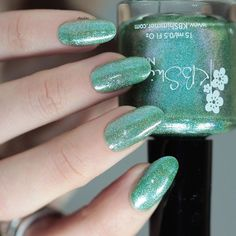 """Available on #HarlowAndCo store 🔸www.harlowandco.org🔸 @harlowandco (worldwide shipping 🌎). KBShimmer {The Holy Kale} @kbshimmer from """"Winter/Holiday 2016"""" collection. 💚💚 I used 2 coats and no Top Coat. #KBShimmer #TheHolyKale #Winter #Holiday #WinterPolish #HolidayPolish #prsample #amazing_pretty #nailitdaily #naturalnaillover #swatch #nailswatch #nail #nails #uñas #manicura #esmalte #polish #nailpolish #indie #indiepolish #indieswatch #supportindie #holo #holopolish #holographic…"""