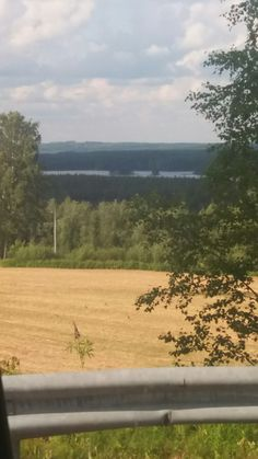 Pelto ja karankajärvi Pylkönmäki
