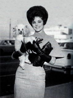Priscilla Presley / Born: Priscilla Ann Wagner, May 24, 1945 in Brooklyn, New York City, New York, USA, 1960s. Big hair, little dog