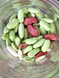 Home grown beans! Make a great winter soup!