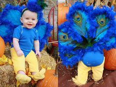 This DIY peacock baby Halloween costume is simply amazing! Check out the post for 100 creative costume ideas and awesome Halloween costume inspiration! Baby Peacock Costume, Peacock Halloween Costume, Peacock Baby, Up Baby Costumes, Baby Girl Halloween Costumes, Last Minute Halloween Costumes, Halloween Tricks, Halloween 2020, Superhero Family Costumes