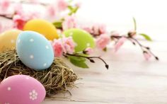 Easter Eggs HD Wallpaper