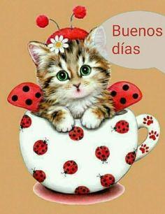 cute Ladybug cat Diamond Mazayka DIY Diamond Painting Embroidery Rhinestone Diamond Mosaic picture for sale new 1 Cute Kittens, Animals And Pets, Cute Animals, Cross Paintings, Cat Art, Cute Pictures, Dog Cat, Cross Stitch, Pets