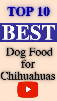 dogs.Chihuahuas, named for a state in Mexico, are tiny, precious toy breed dogs that make great companions.These small pups can be quite possessive and feisty.Here is list of top 10 best dog food for chihuahuas... Best Dog Food Brands, Toy Dog Breeds, Chihuahuas, Best Dogs, Dog Food Recipes, Pup, Mexico, Dog Baby, Chihuahua Dogs