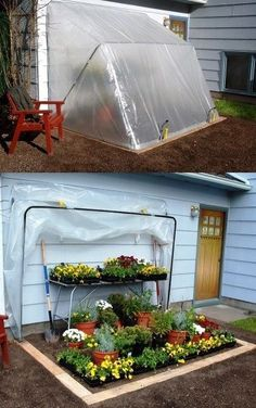 Collapsible greenhouse! Cheap, easy, compact, non-permanent! We'd have to put it against a fence or wall though.