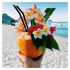"2,224 Likes, 4 Comments - Missy Empire (@missyempire) on Instagram: ""MONDAY DREAMIN' #missyempire #missygirls #tropicalparadise #mondays #cocktails #beachlife…"""