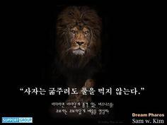 사자는 굶주려도 풀을 먹지 않는다-SAM W. KIM-